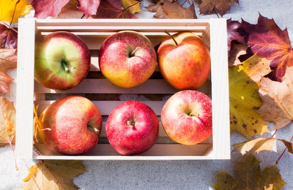 ApfelHafer